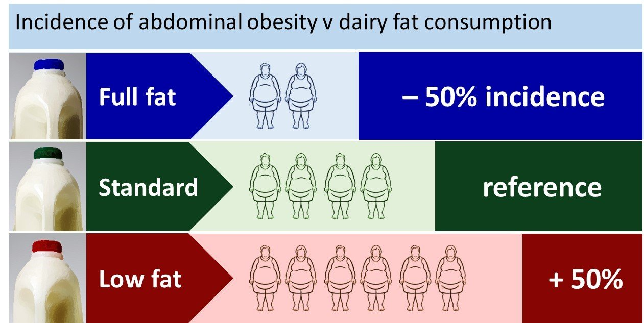 Dairy_Fat_Infographic