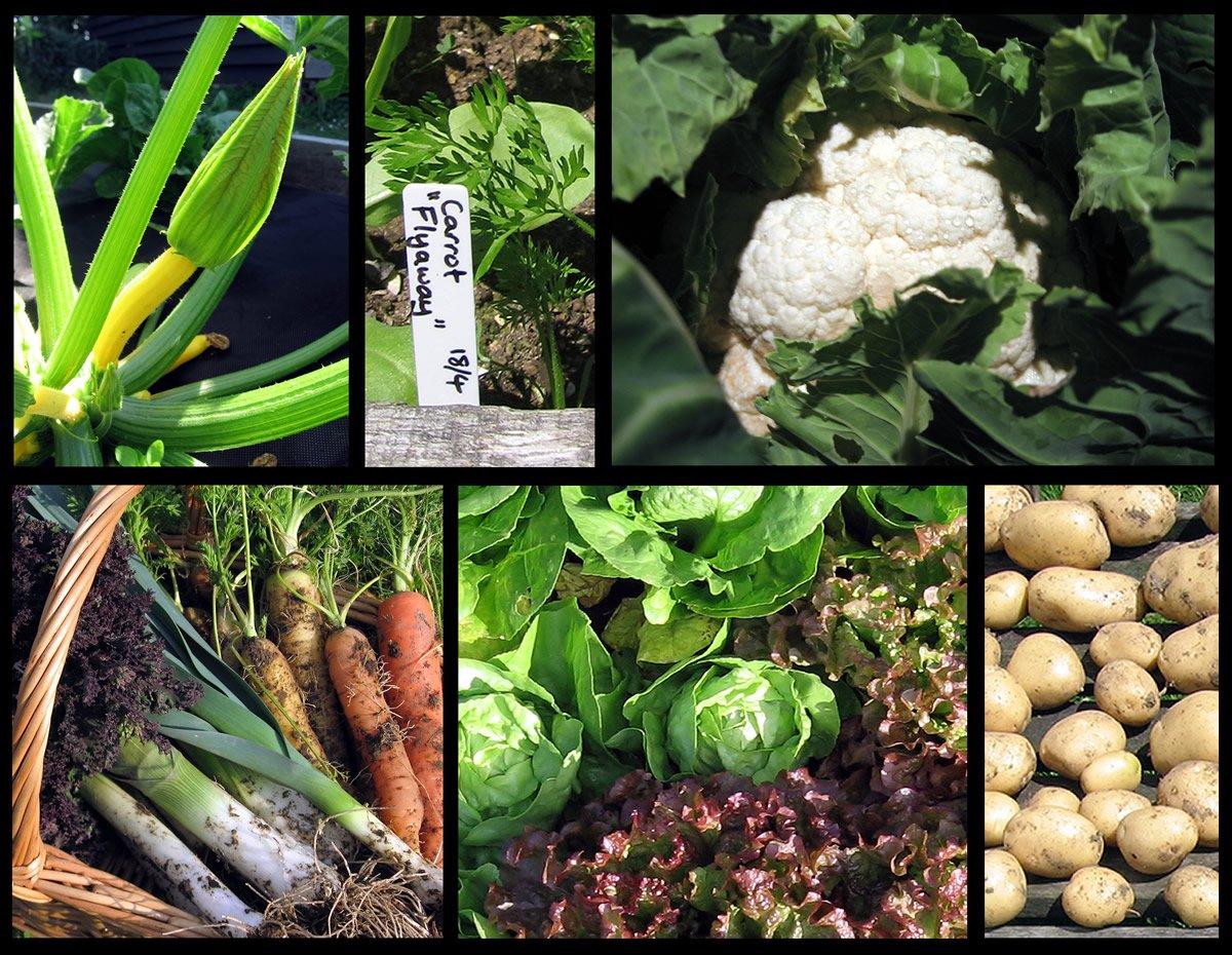 Vegetable_mosaic