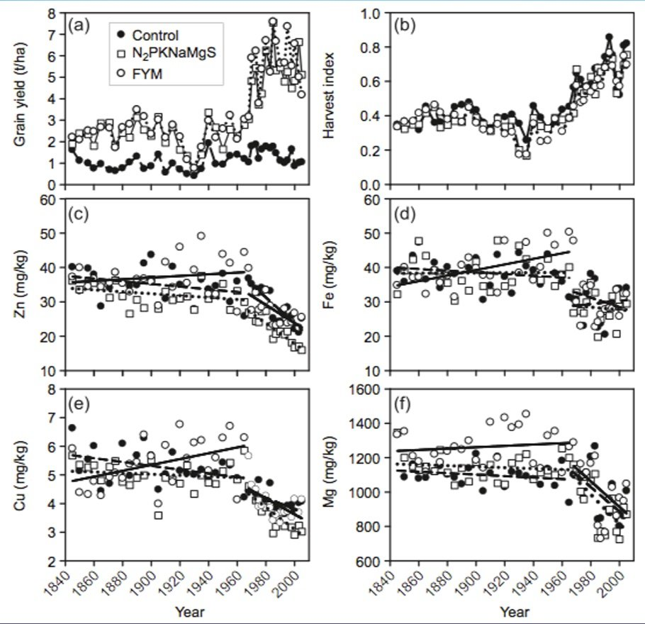 Graphs showing the decrease in mineral content of wheat since the Green Revolution