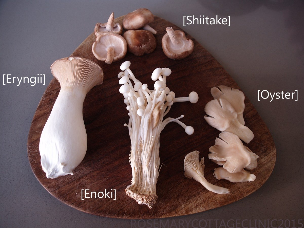 Four kinds of speciality mushrooms on a chopping board