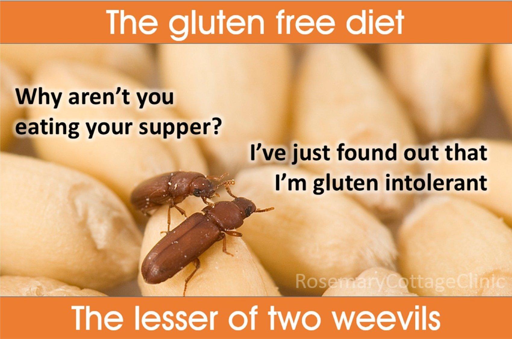 Gluten_free_weevils