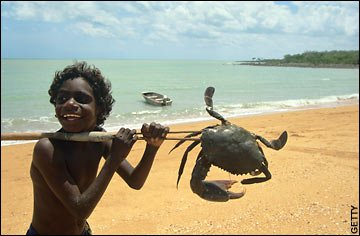 aboriginal_boy_crab_hunting