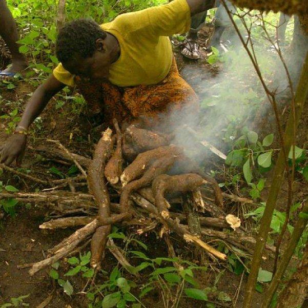 Hadza_ekwa_root_roasting