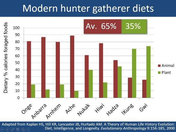 Hunter_gatherer_diet_ratios