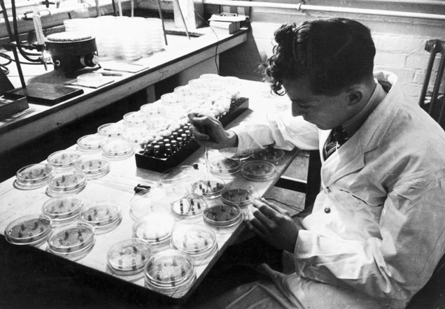 Streptomycin being produced, Boots laboratory, Nottingham, 1946.
