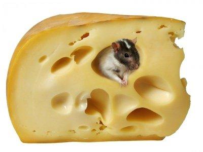 Keto-mouse