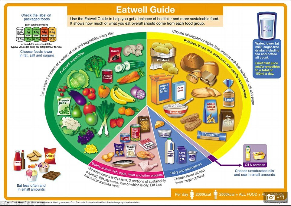 Government-eat-well-plate
