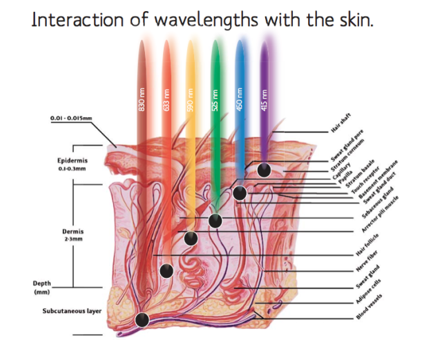 light-penetration-by-wavelength