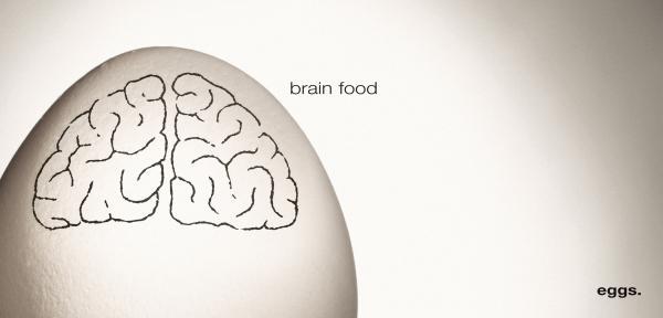 american-egg-brain