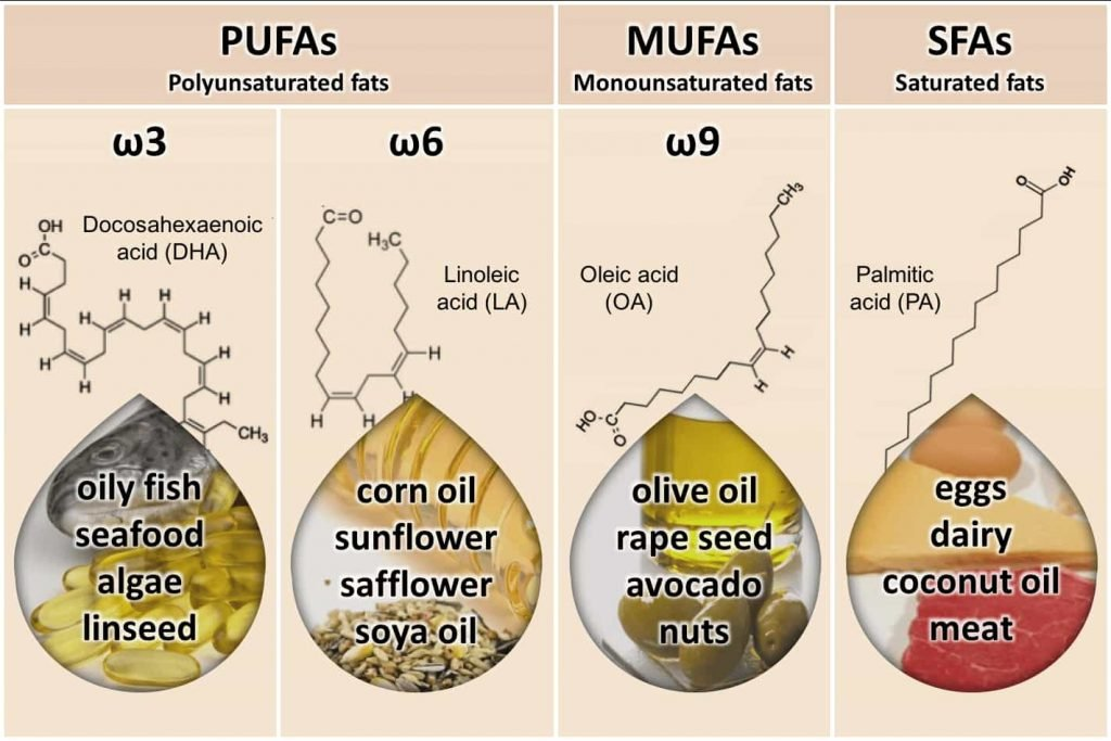 Infographic showing PUFAs MUFAs and SFAs